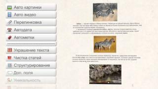 Зеброид - как делать сателлиты и автоблоги