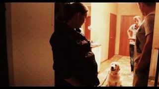 Как правильно выходить с собакой из квартиры(возвращение Кима,3 часть)