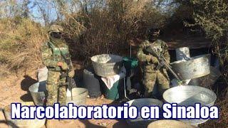 Narcolaboratorio en Sinaloa