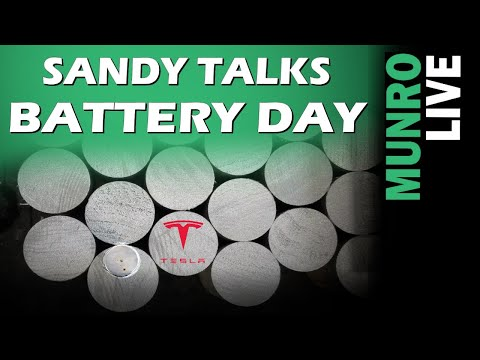 Sandy is Thrilled about Tesla's Battery Day & Begins Battery Mock-up