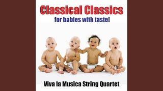 String Quintet in E, Op. 11, No. 5: Menuet