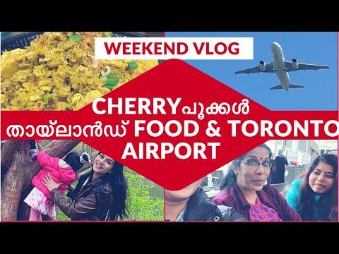 Ep#66 | CHERRY BLOSSOM, THAILAND FOOD & TORONTO AIRPORT കാണണ്ടേ ? | അങ്ങനെ അമ്മ നാട്ടിലേക്ക്  |