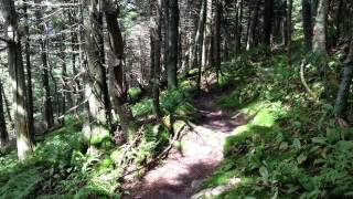 Thirty Quiet Seconds on the Long Trail - Near Killington Peak