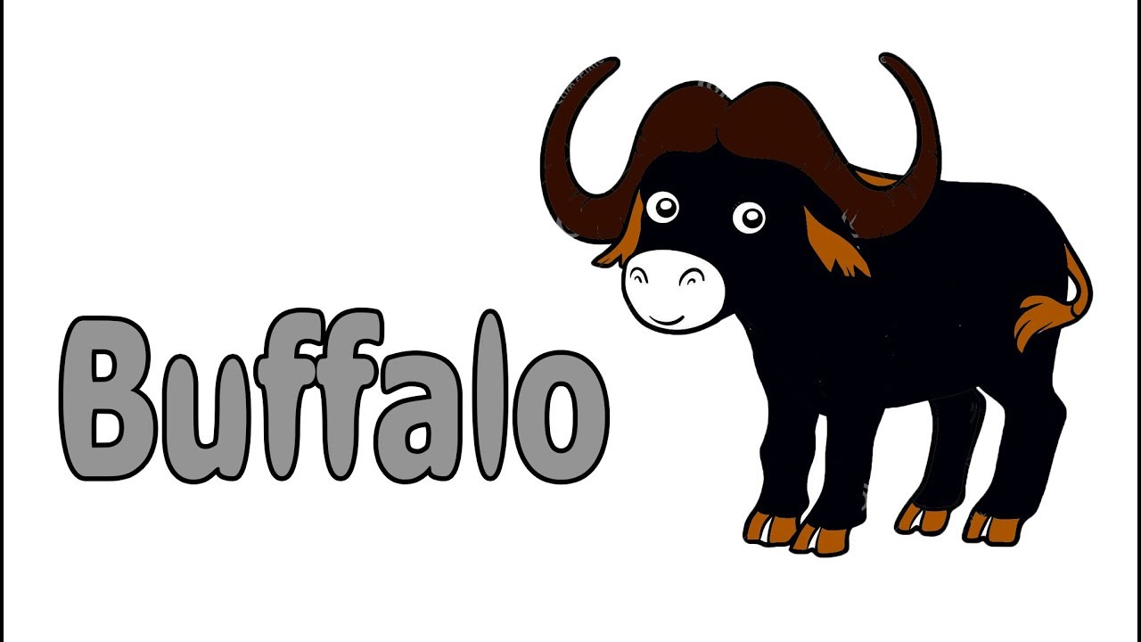 Buffalo Drawing For Kid 2019