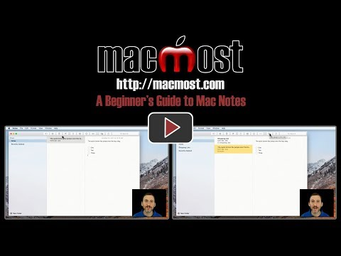 A Beginner's Guide to Mac Notes (#1518)