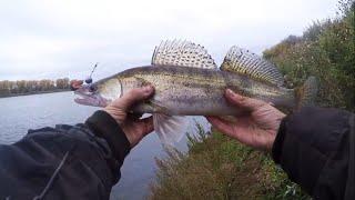 Судак из под свала на джиг с берега Осенняя рыбалка на реке Белой в Башкирии
