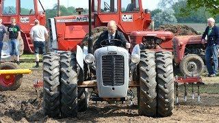 Video Massey Ferguson 10, 12, 35, 65 & Ferguson 35 Tandem Tractors Working in The Field   DK Agriculture download MP3, 3GP, MP4, WEBM, AVI, FLV Agustus 2017