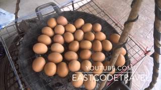 Chacoal grilled eggs  Thai street f...