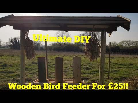 Making the Ultimate DIY Wooden Bird Feeder palace