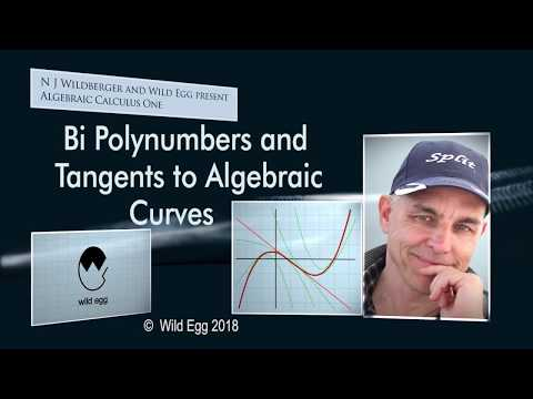 AlgCalcOne: Bi Polynumbers and Tangents to Algebraic Curves
