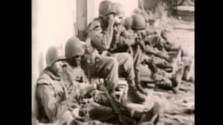 761st Tank Battalion - World War II