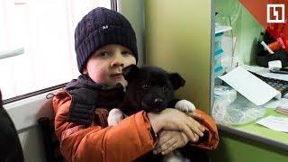 Шестилетний мальчик спас 100 собак и кошек