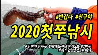 2020년9월2일 인천 진성2호 해양유선 주꾸미선상낚시