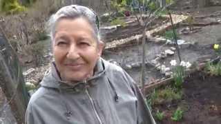 РЧВ 63 Русские бабушки на американских огородах