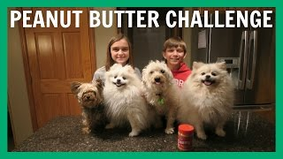 Dog Peanut Butter Challenge