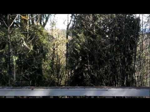 Video walkthru of 74549 Deal Road, Rainier Oregon 97048