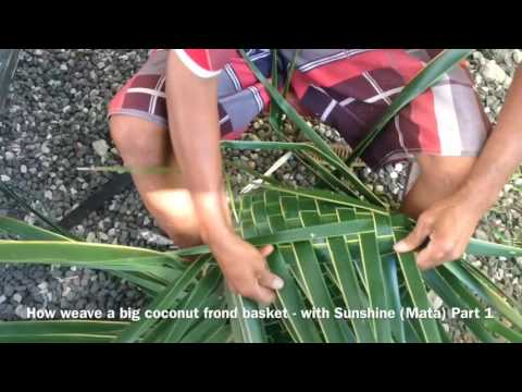 Cook Islands Holiday Guide - How to weave a Big Basket Prt 1