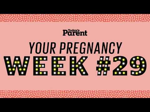 Your pregnancy: 29 weeks