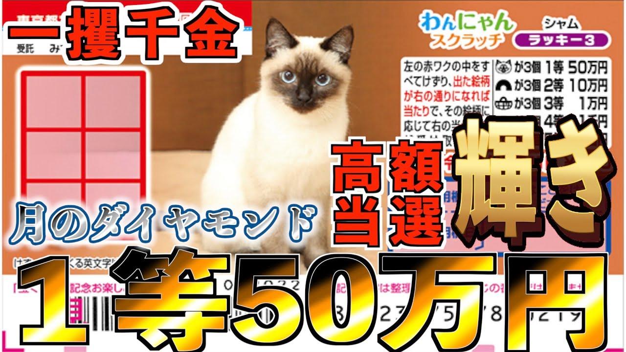 【わんにゃんスクラッチ】1等50万円『シャム』高額当選に相応しい猫に見惚れてしまう【#宝くじ】