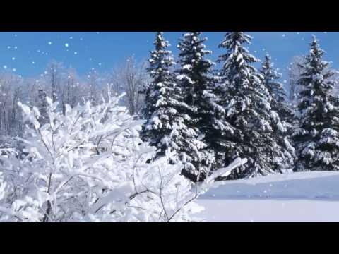 Видео: Salvatore Adamo - Tombe La Neige / Падает снег