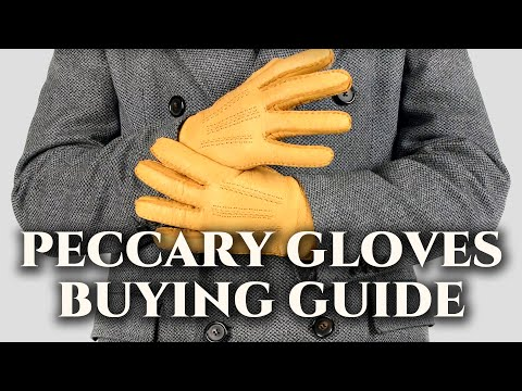 Peccary Gloves Buying Guide - How To Find The Best Handmade HydroPeccary™ Men's Leather Dress Gloves