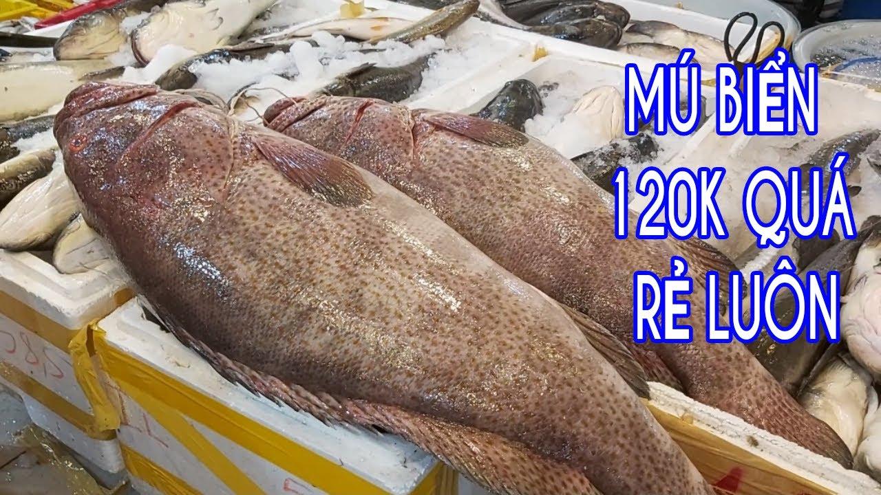 CHỢ BÌNH ĐIỀN Mùa Mưa Tới Khỏi Đi Chợ Cho Cực Alo Hải sản Về Tận Nhà