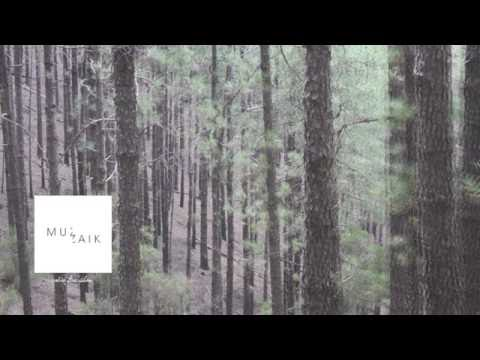Muzaikfm 002 - radio live set I FAIDEL