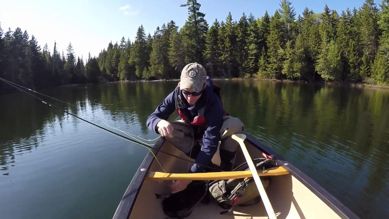 2016 north maine woods camping youtube for Maine fishing laws 2017