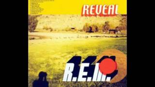R.E.M. - Imitation Of Life (HQ+Lyrics)