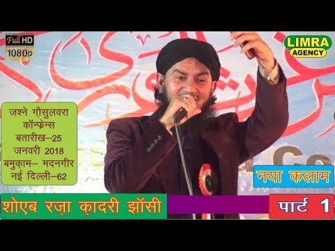 Shoaib Raza Qadri Part 1,नई  दिल्ली  25 January 2018 Madangeer New Delhi HD India