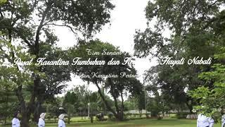 Download Lagu Senam Kreasi Kicir Kicir Pusat Karantina Tumbuhan dan Keamanan Hayati Nabati mp3