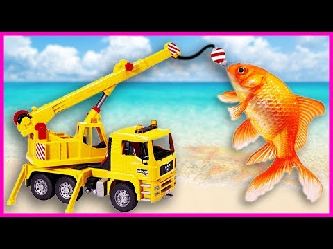 Truck Rescue Yellow Fish From Deep Water | Construction Vehicles Cars Toy For Children