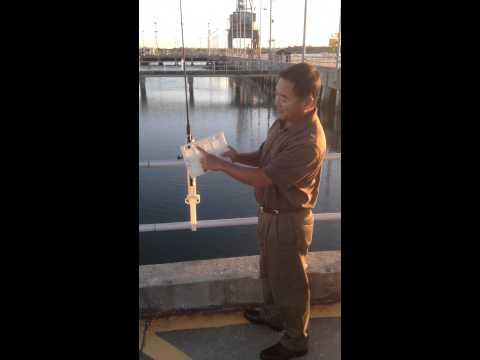 Pier pal trident model pier fishing pole holder patent for Pier fishing rod holder