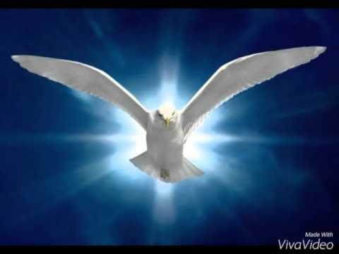 Rocío Crooke Espíritu santo ( imágenes )