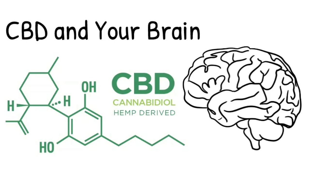 Do You Know What CBD Oil Is and How It ...