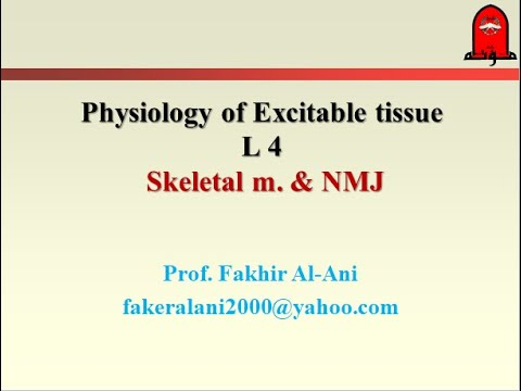 Physiology NMJ And Skeletal Muscle Contraction