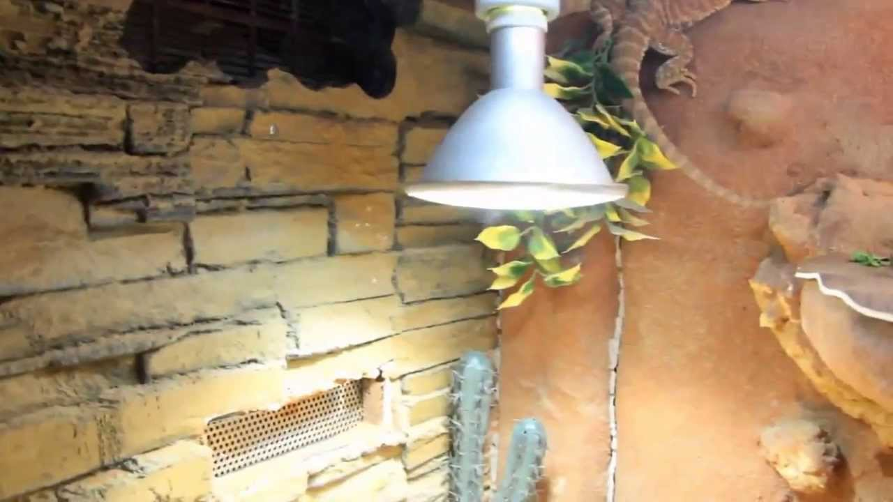Tutorial cr ation d 39 un d cor de fond 1 re tape volution de mes levages youtube - Decor de fond terrarium desertique ...