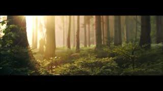 NEW | beautiful Quran recitation | heart soothing voice screenshot 4