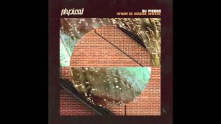 DJ Pierre - What Is House Muzik (Ricardo Villalobos What Is Remix)