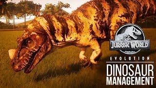 HOW DO YOU KEEP A DINOSAUR HAPPY? | Jurassic World: Evolution Gameplay Analysis