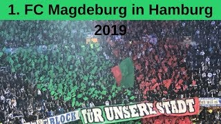 Hamburg gegen Magdeburg 8.4.2019 - Fans aus Magdeburg drehen durch