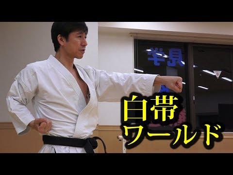 空手白帯のみんな!中達也先生に正拳突きを教わろう!Seiken-zuki by Tatsuya Naka, Shiro-obi world