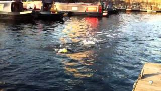 Dock Swim 2 Mersey Tri Club Training