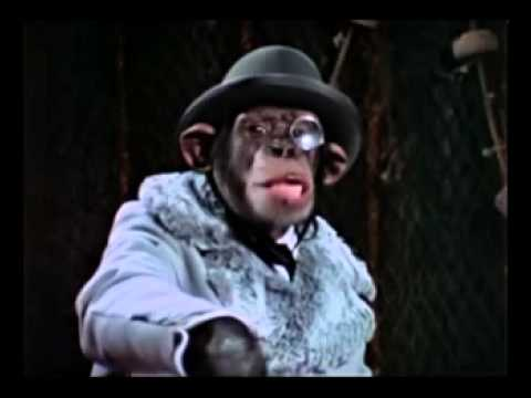 Chump, the Chimp Astronaut Song.mpg