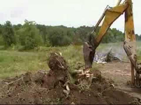 Backhoe Stump Removal