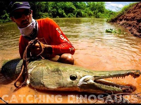 DINOSAURS STILL LIVE IN THE HEART OF TEXAS 8 FOOT PREHISTORIC FISH