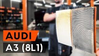 Montavimo Variklio oro filtras AUDI A3: vaizdo pamokomis