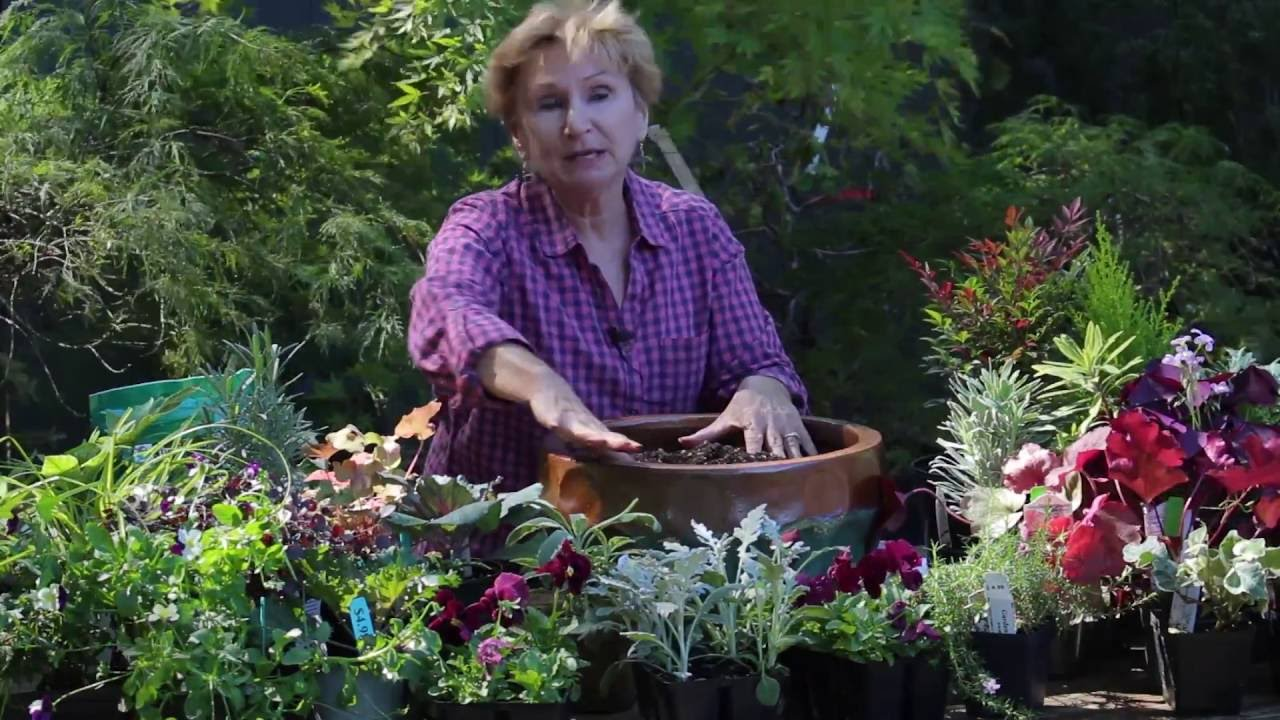 How To Build A Fall Container Garden