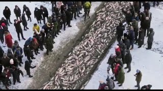 💎 CHINA BREATHTAKING NORTHERNMOST | BEST OF HEILONGJIANG 黑龙江