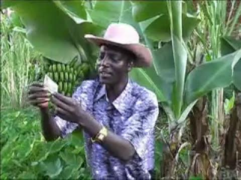 John De'Mathew - Muoyo ti Kibandi